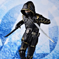 S.H.Figuarts Ronin